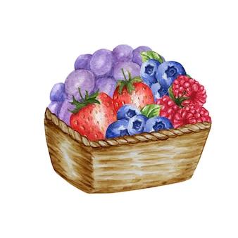 Ilustração em aquarela com cesta de madeira com várias frutas vermelhas, morango, framboesa e mirtilo