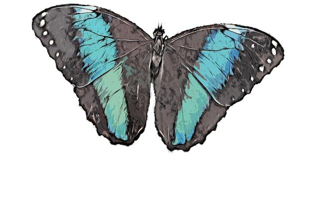 Ilustração em aquarela de borboleta azul preta