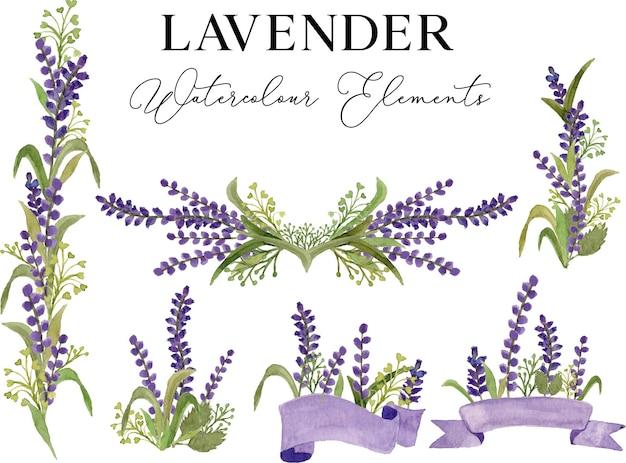 Ilustração em aquarela de flor de lavanda