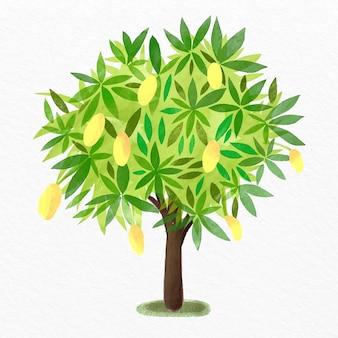 Ilustração em aquarela de mangueira