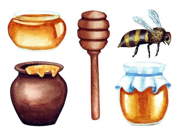 Ilustração em aquarela de mel no pote e frasco, conta-gotas, abelha, isolado no branco.