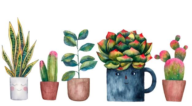Ilustração em aquarela de plantas em casa em um vaso, vaso sobre um fundo branco
