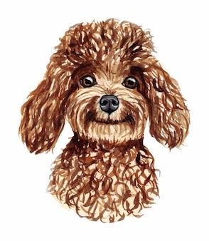 Ilustração em aquarela de um cachorro engraçado. raça de cachorro popular. caniche de cachorro. personagem feito à mão, isolado no branco