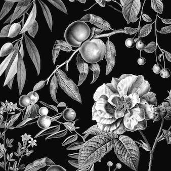 Ilustração em preto e branco de botânica e frutas em vetor vintage rosa padrão