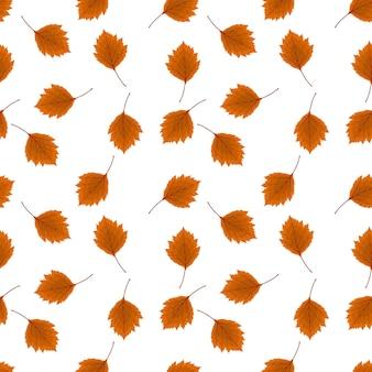Ilustração em vetor abstrato fundo de outono com queda de folhas de outono. padrão uniforme. eps10