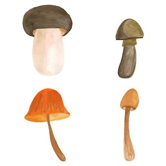 Ilustração em vetor aquarela coleção isolada de cogumelos. natureza do outono. outono. fundo de verão. desenho de desenho animado. conjunto de mão desenhada.