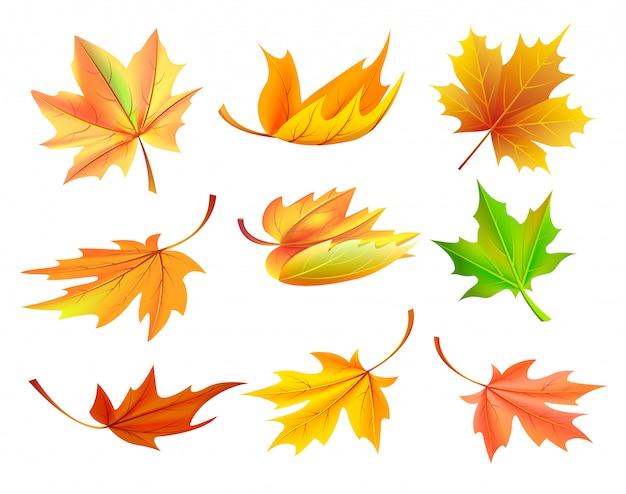 Ilustração em vetor caída folhas amarelas douradas
