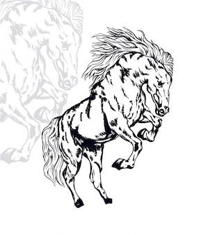 Ilustração em vetor cavalo pular