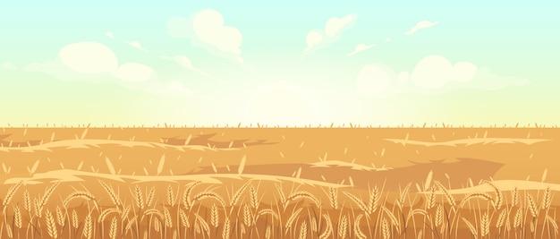Ilustração em vetor cor plana campo trigo dourado. harvest season 2d cartoon landscape. nascer do sol na zona rural. área agrícola ao amanhecer. manhã vista do prado com cereais