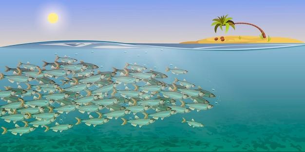Ilustração em vetor da paisagem do mar cardume de peixes.