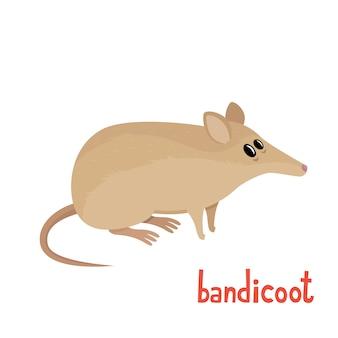 Ilustração em vetor de bandicoot fofinho em estilo cartoon