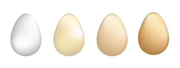 Ilustração em vetor de conjunto de ovos.