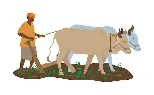 Ilustração em vetor de fazendeiro indiano em turbante com par de bois arando o campo