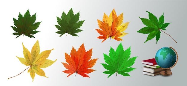 Ilustração em vetor de folhas caídas de outono coloridas brilhantes realistas no fundo branco. conjunto de folhas de outono coloridas. coleção de folhas de outono realista de vetor.
