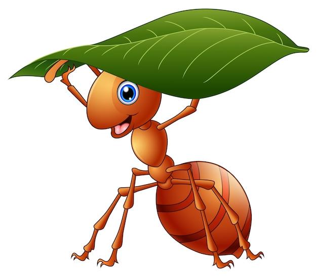 Ilustração em vetor de formiga cartoon segurando uma folha verde