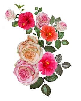 Ilustração em vetor de hibisco e rosa