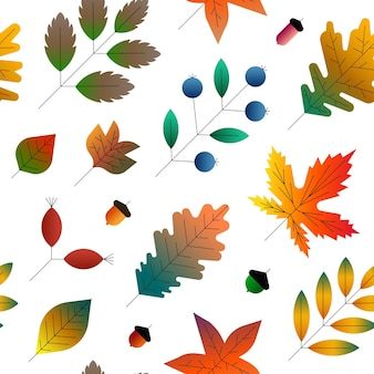 Ilustração em vetor de outono padrão floral sem emenda fundo branco