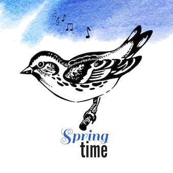 Ilustração em vetor de pássaro de esboço desenhado de mão. fundo aquarela primavera