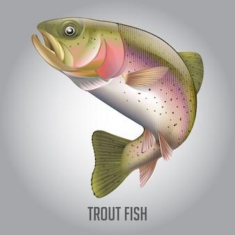 Ilustração em vetor de peixe truta