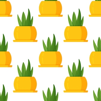 Ilustração em vetor de suculento padrão em fundo branco. impressão de uma planta de casa em um vaso brilhante amarelo brilhante. vaso de bela sala como decoração.