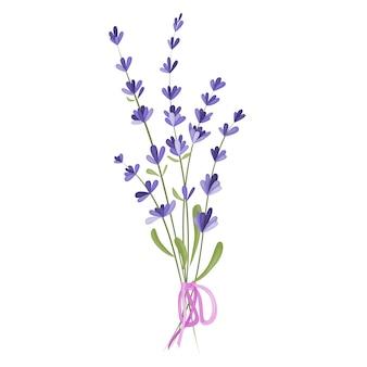 Ilustração em vetor de um buquê de flores de lavanda em um fundo branco