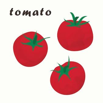 Ilustração em vetor de um tomate vermelho. isolado em um fundo branco.