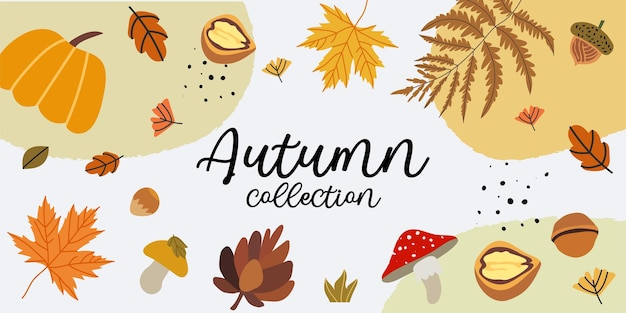 Ilustração em vetor de uma nova coleção de outono, venda de compras ou pôster promocional ou layout de baner web decorado com elementos florais como pinha, bolota, folhas de plátano, abóbora, cogumelos e samambaia.