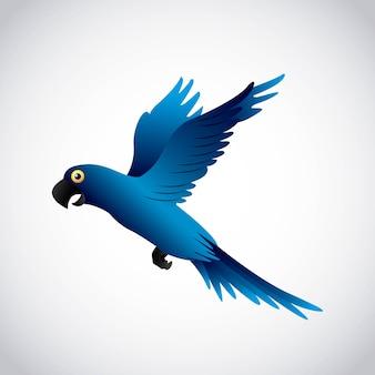 Ilustração em vetor design arara azul