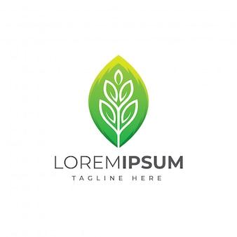 Ilustração em vetor design moderno folha logotipo