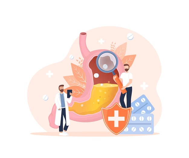 Ilustração em vetor dos desenhos animados ilustração em vetor plana com sistema digestivo de intestinos