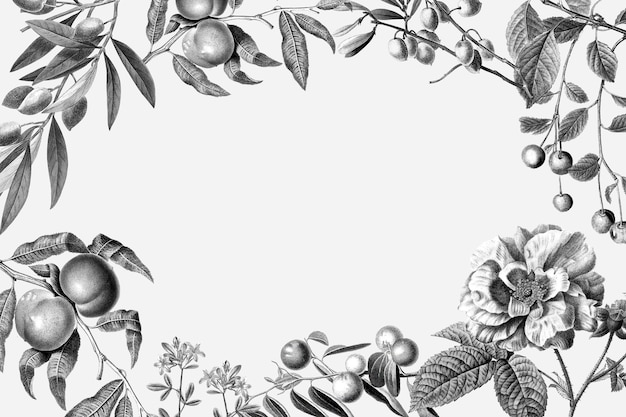 Ilustração em vetor floral vintage frame rosa e frutas no fundo branco