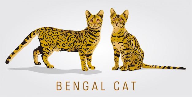 Ilustração em vetor gato bengala