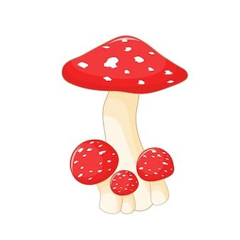 Ilustração em vetor gira de cogumelo em um fundo branco.