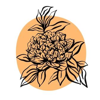 Ilustração em vetor mão desenhada flor peônia. ilustração moderna minimalista. design de cartões de felicitações, convites, redes sociais
