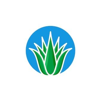 Ilustração em vetor modelo aloe vera ícone logotipo