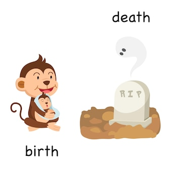 Ilustração em vetor oposto nascimento e morte