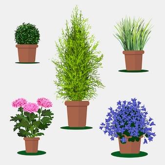 Ilustração em vetor plana de plantas em vasos.