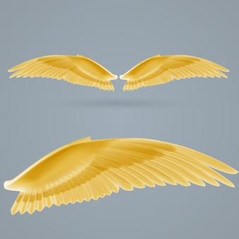 Ilustração inspirar asas