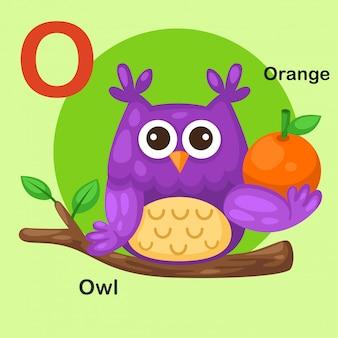 Ilustração isolado animal alfabeto letra o-coruja, laranja