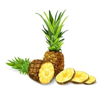 Ilustração isolado de abacaxi
