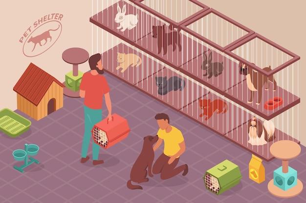 Ilustração isométrica de animais sem-teto