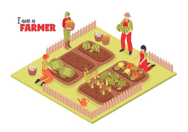 Ilustração isométrica de fazenda e agricultores