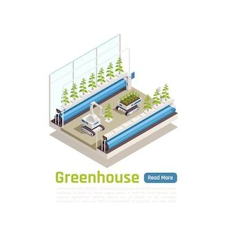 Ilustração isométrica de jardinagem com estufa hidropônica moderna