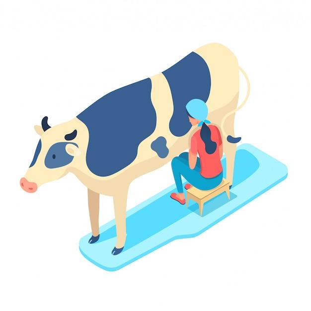 Ilustração isométrica de mulher ordenhando vaca