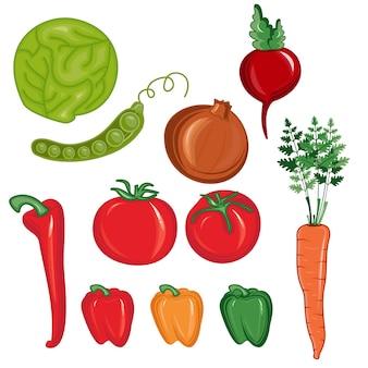 Ilustração, jogo, de, legumes, isolado