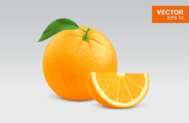 Ilustração laranja realista
