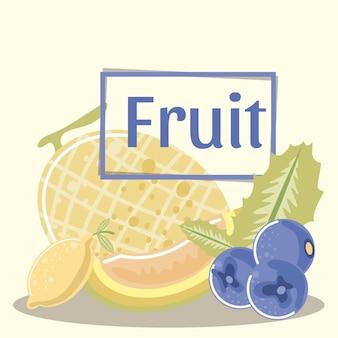 Ilustração melão framboesa limão orgânico e frutas frescas