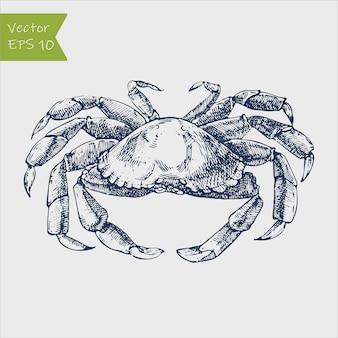 Ilustração monocromática de frutos do mar desenhada à mão