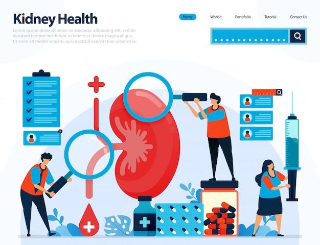 Ilustração para verificar a saúde renal. doenças e distúrbios renais.