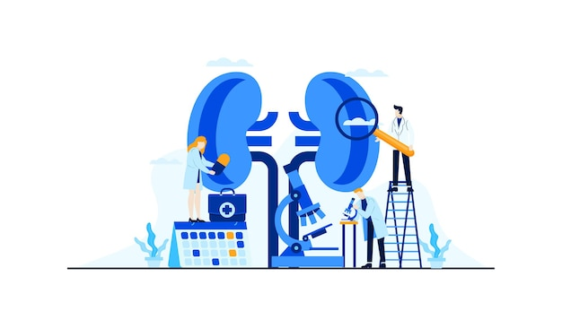 Ilustração plana de doença renal pesquisa do médico para concepção de conceito de tratamento
